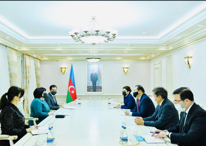Secretary General of the Turkic Council met with the Speaker of the National Assembly of Azerbaijan