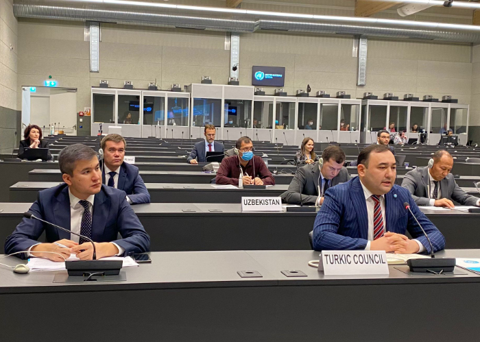 Turkic Council delegation attended UNECE session on Customs Questions affecting Transport