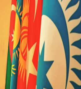 Turkic Council 2015 Activity Report
